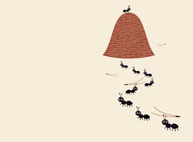 5-La colonie de fourmis